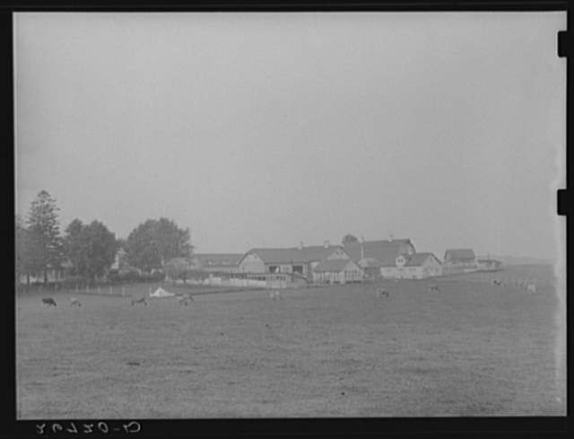 Prosperous, well-kept farm supported by man with non-agricultural income. Burlington County, New Jersey