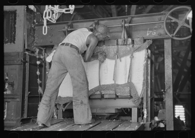 Putting steel straps in place to hold pressed cotton after pressure has been removed, Lehi, Arkansas cotton gin