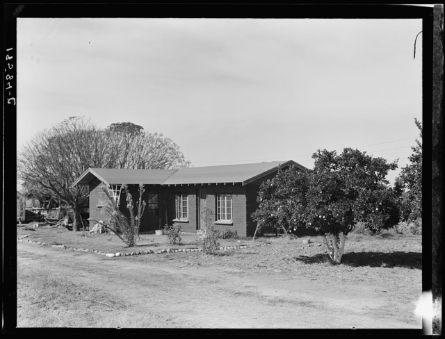 Rural rehabilitation, Tulare County, California. In 1936 this family was on relief. With a Farm Security Administration (FSA) loan of seven hundred and eighty dollars, they were able to purchase and install an irrigating pump for the vineyard, a team, and the balance gave them subsistence and operating expenses for the first grape season