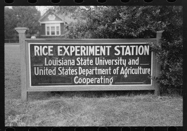 Sign of experiment station, west of Crowley, Louisiana