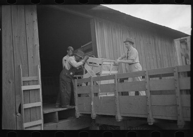 Southeast Missouri Farms. Loading cook stove on to truck for transporting to new farm unit