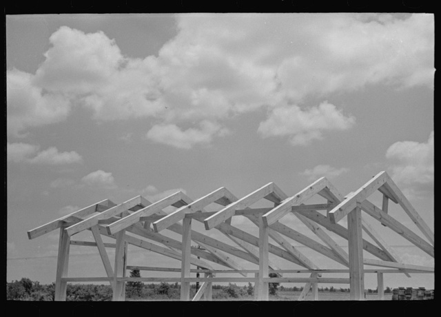 Southeast Missouri Farms Project. View of roof construction of shop assembled chicken house