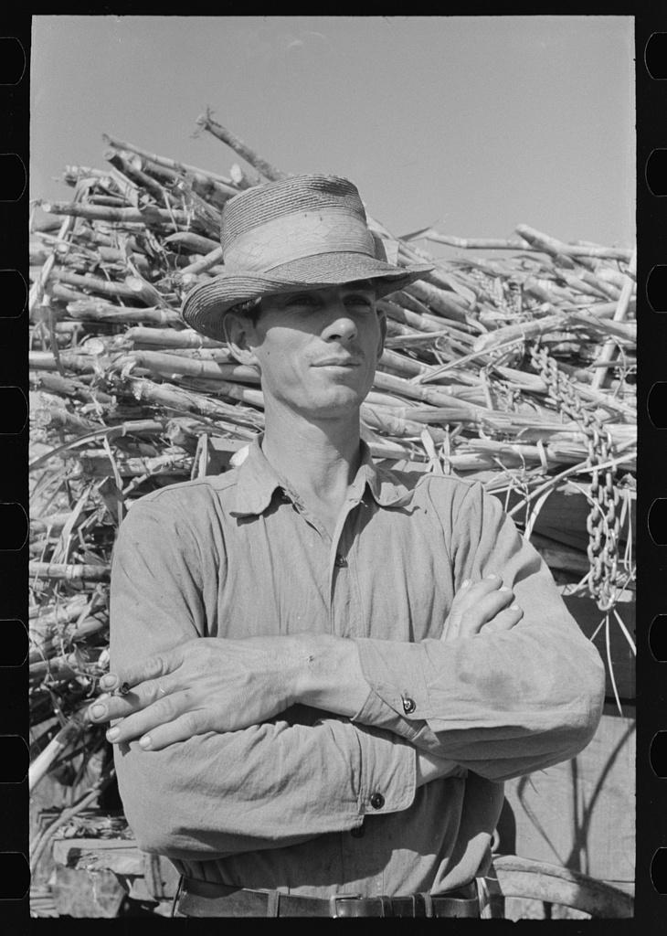 Sugarcane farmer, Delcambre, Louisiana