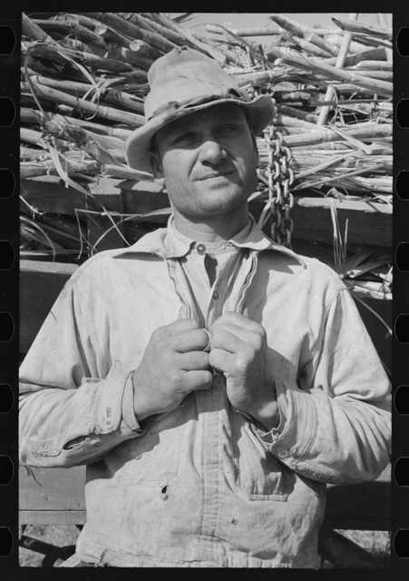 Sugarcane farmer near Delcambre, Louisiana