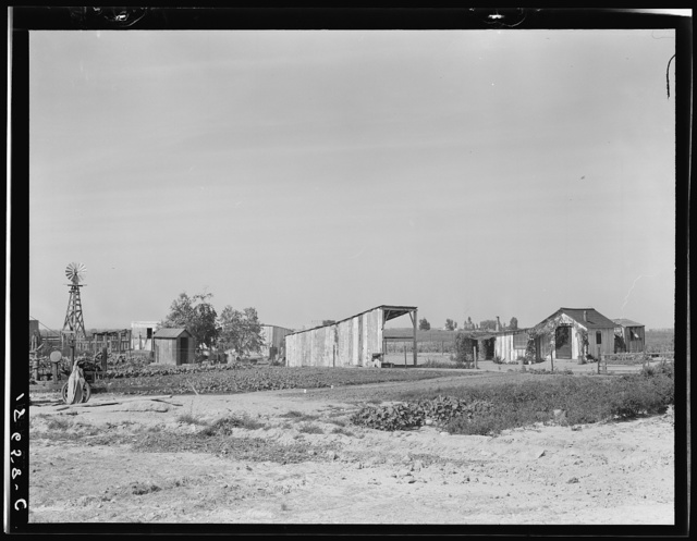 This family from Arkansas had one thousand dollras when they arrived in California. There are eleven children in family. They bought a forty acre piece of land on which they still owe one thousand dollars. A Farm Security Administration (FSA) loan bought them dairy cows, an irrigation plant, and seed for irrigated pasture lands. Note large vegetable garden and small house. Tulare County, California