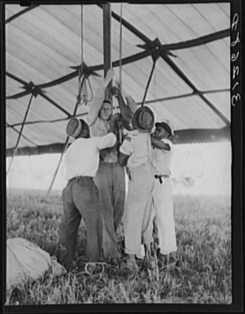 Tightening ropes in raising circus tent. Lasses-White traveling show.  Sikeston, Missouri