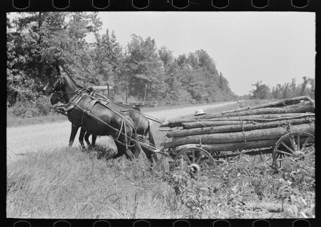Wagonload of firewood crossing ditch, La Forge, Missouri