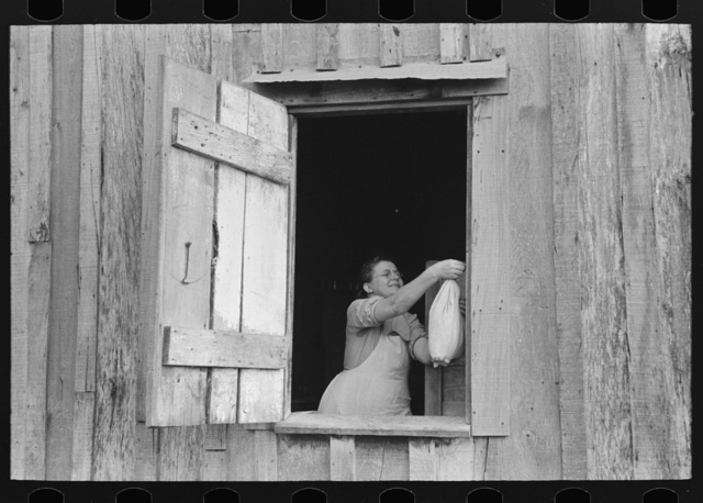 Wife of FSA (Farm Security Administration) client near Morganza, Louisiana removing bag of food from nail