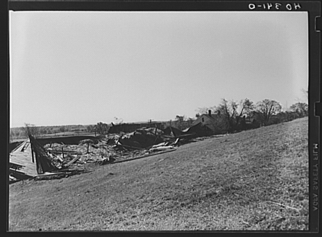 Worcester (vicinity), Massachusetts. Wreckage left by a New England hurricane