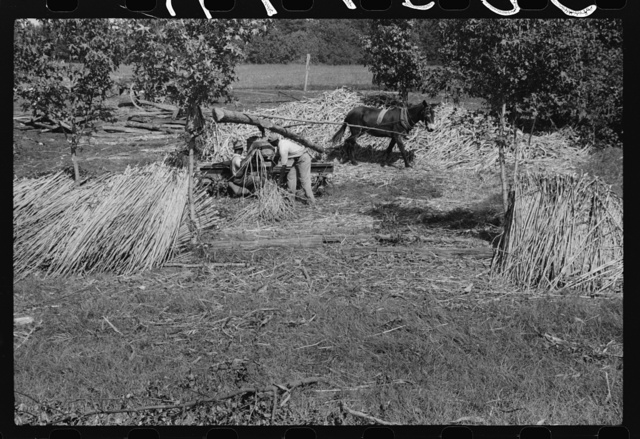 A portable cane mill. The owner gets every sixth gallon for making the sorghum syrup. This is on the property of a Negro owner, Wes Cris, a tobacco farm of about 165 acres in a prosperous Negro settlement near Carr, Orange County, North Carolina