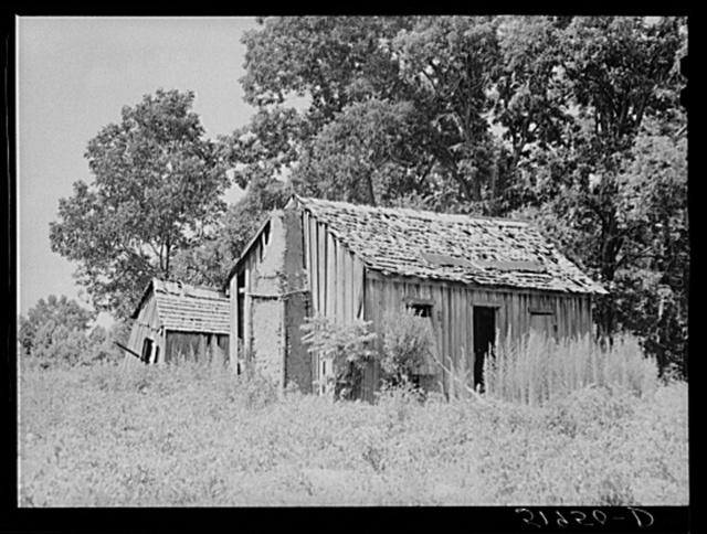 Abandoned shacks near Beaufort, South Carolina