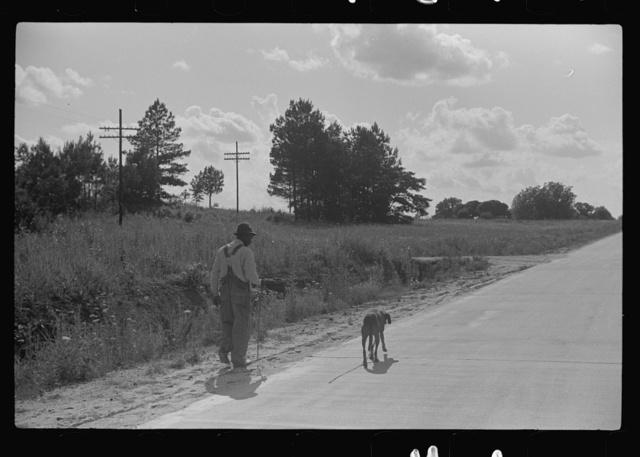 Along highway near Manning, Clarendon County, South Carolina