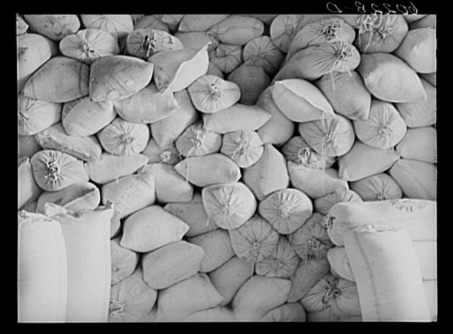 Bags of seed at coop seed exchange. Williams, Minnesota