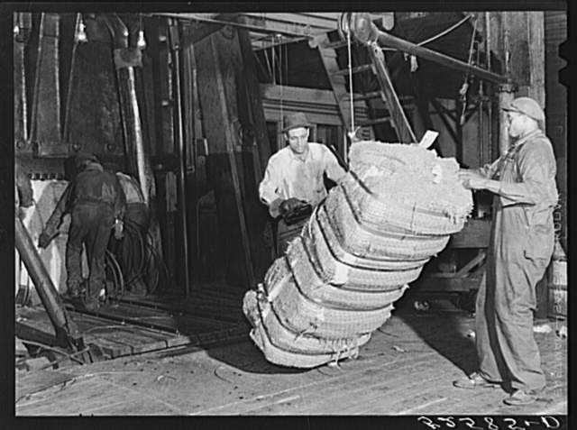 Bale of cotton after compressing. Memphis, Tennessee