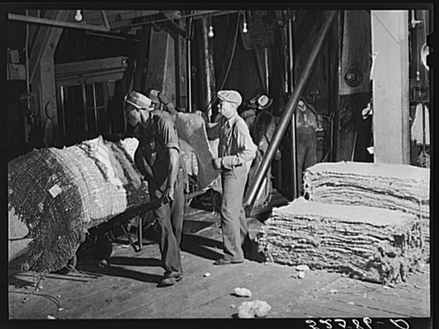 Bale of cotton going into the compress. Memphis, Tennessee
