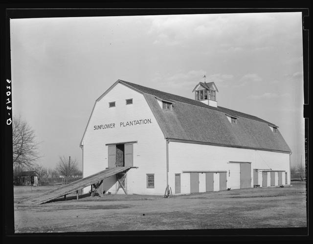 Barn. Sunflower Plantation, Mississippi