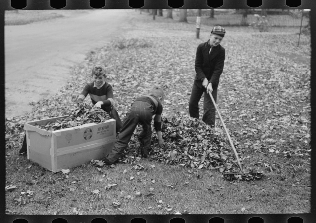 Boy raking up leaves on front lawn, Bradford, Vermont