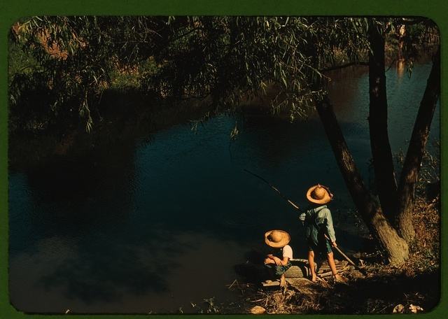 Boys fishing in a bayou, Schriever, La. Cajun children in a bayou near the school. Terrebonne, a Farm Security Administration project