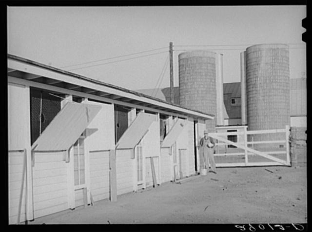 Buildings are efficiently designed for modern farm methods. Bois d'Arc Cooperative. Osage Farms, Missouri