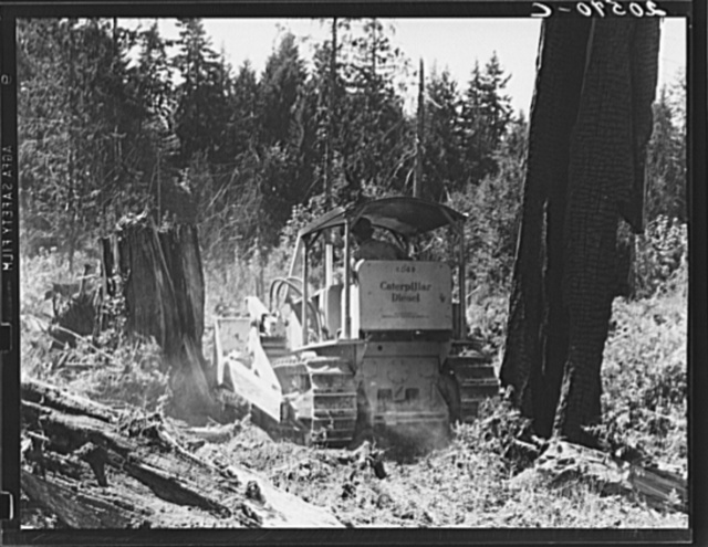Bulldozer in operation on the Nieman place. Western Washington, Lewis County, near Vader, Washington. See general caption number 41