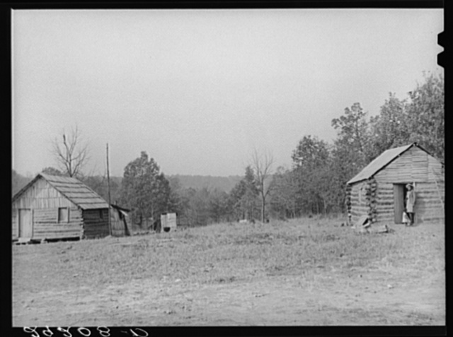 Cabins of evicted sharecroppers. Butler County, Missouri