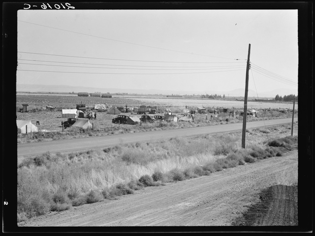 Camp of migrant potato pickers seen from potato shed across the road. Siskiyou County, California. General caption number 63-1