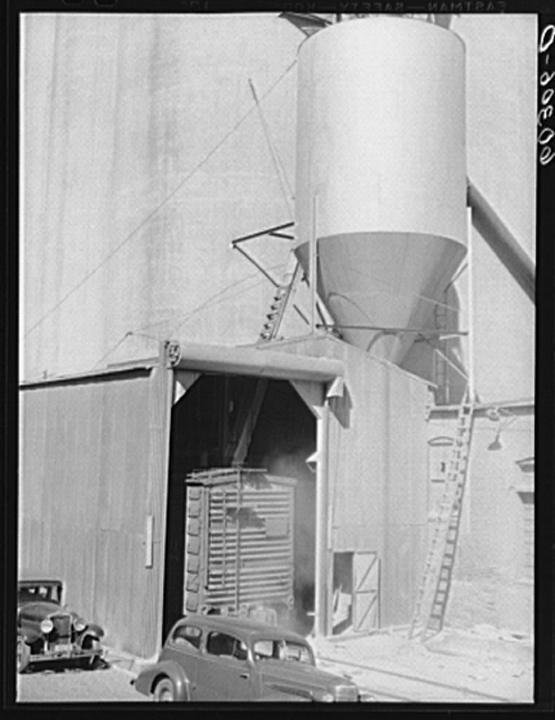 Carload of wheat unloading at grain elevator. Minneapolis, Minnesota