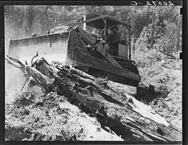 """Catskinner"" and bulldozer. They work on contract. Western Washington, Lewis County, near Vader, Washington. See general caption number 41"