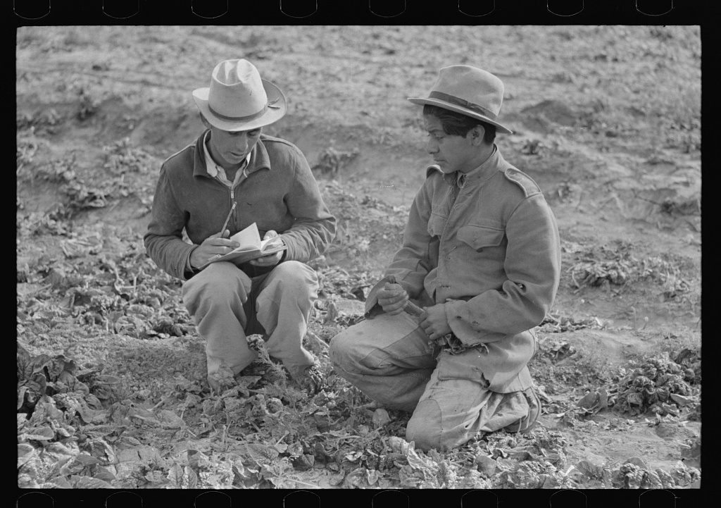 Checker of Mexican labor contractor talking to cutter, La Pryor, Texas