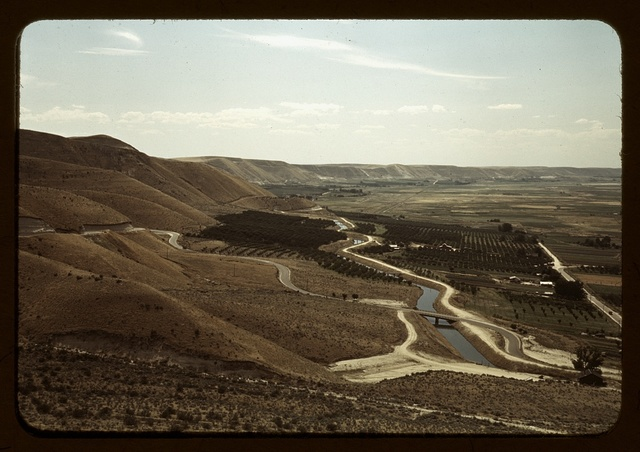 Cherry orchards and irrigation ditch, Emmett, Idaho