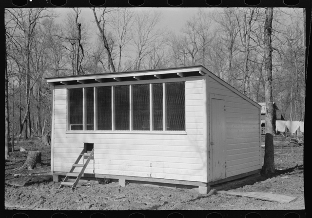Chicken coop, Chicot Farms, Arkansas