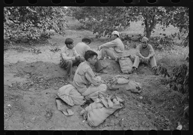 Citrus workers resting, Weslaco, Texas