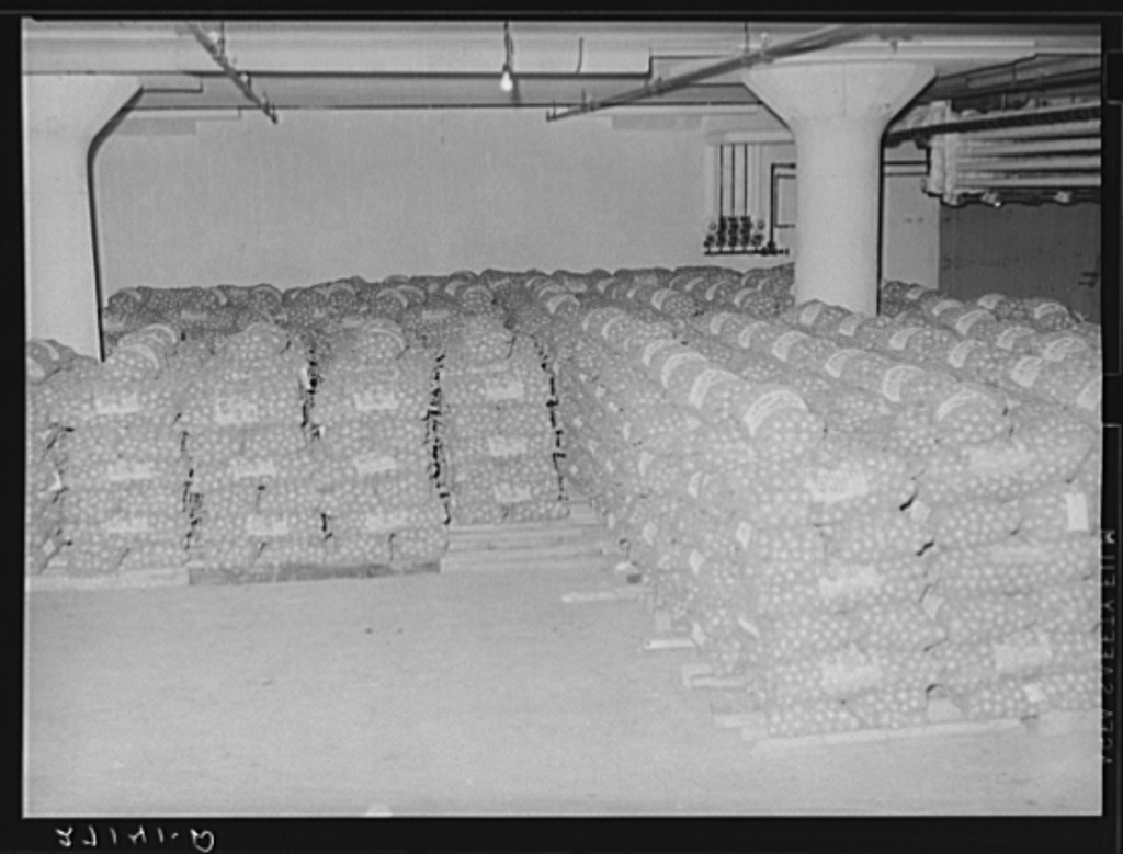 "Cold storage warehouse onions. Jersey City, New Jersey. Onions are kept in ""cooler room"""