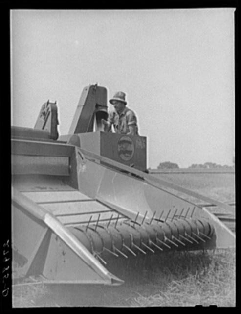 Combine harvester for timothy grass seed. Jasper County, Iowa
