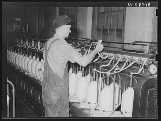 Converting cotton ropes into rough thread. Laurel cotton mills, Laurel, Mississippi