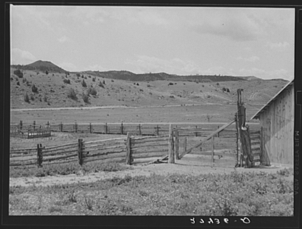 Corral fence and gate. Quarter Circle 'U' Ranch, Montana