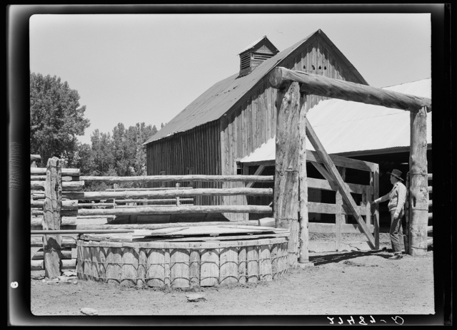 Corral gate and watering trough. Quarter Circle 'U' Ranch, Montana