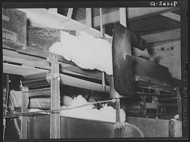 Cotton from the bale is transported by belt to machine for making cotton bats. Weighing device is so sensitive that it directs the cotton from one machine to another. Laurel, Mississippi