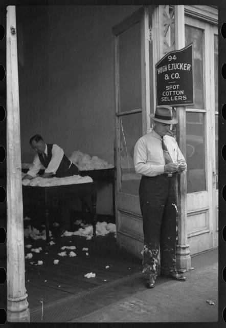 Cotton on trousers of cotton broker in classing and sampling room in office of Cotton Row, Front Street, Memphis, Tennessee
