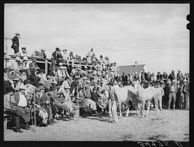 Crowd at horse auction. El Dorado, Texas