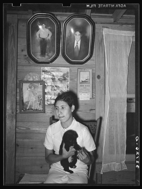 Daughter of Mexican farm family at home. Portraits of family are above her. Near Santa Maria, Texas