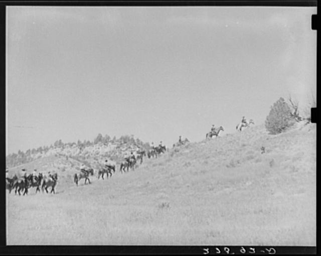 Dudes riding. Quarter Circle 'U' Ranch, Montana