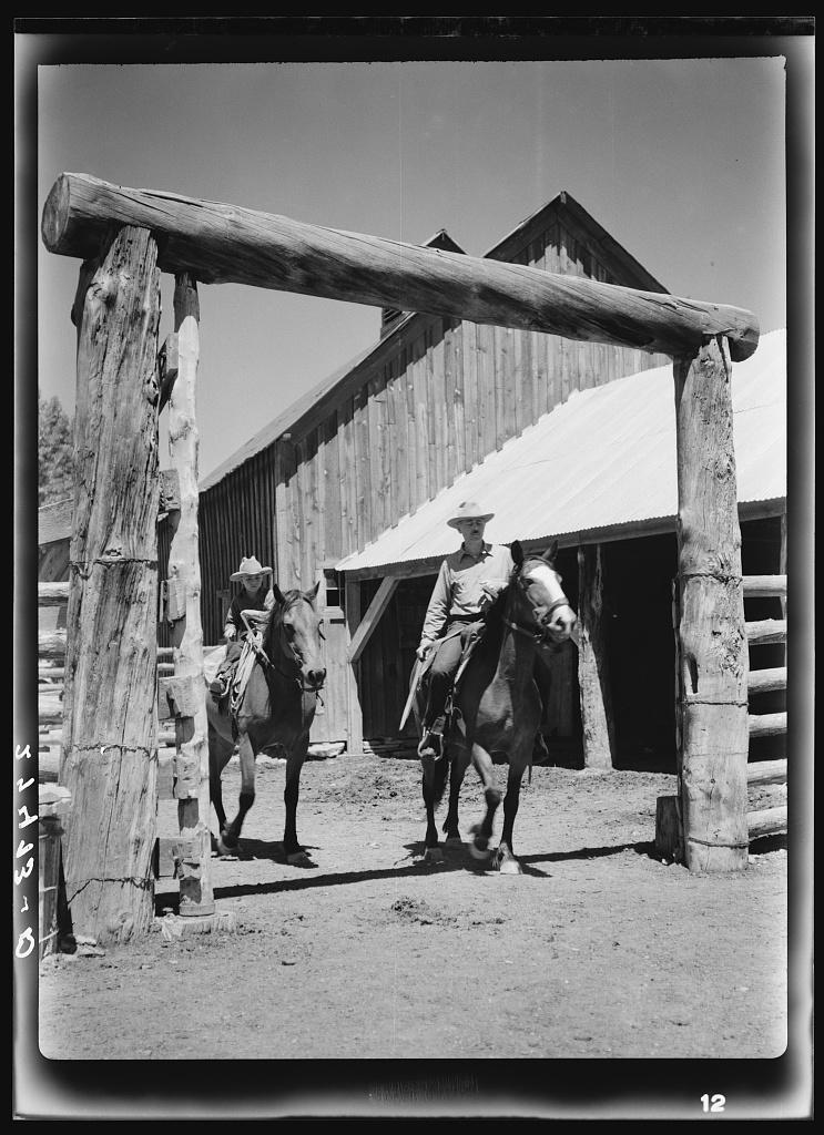 Dudes riding through corral gate. Quarter Circle 'U' Ranch, Montana