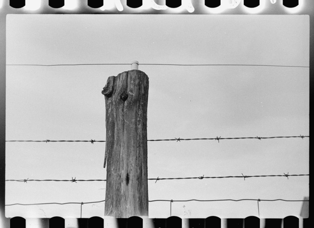Electrified barbed wire fence, Louisa County, Virginia