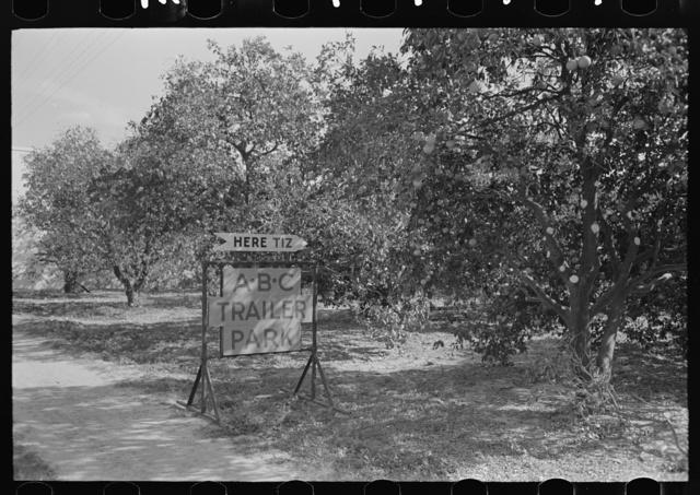 Entrance to trailer park amid the orange groves, McAllen, Texas