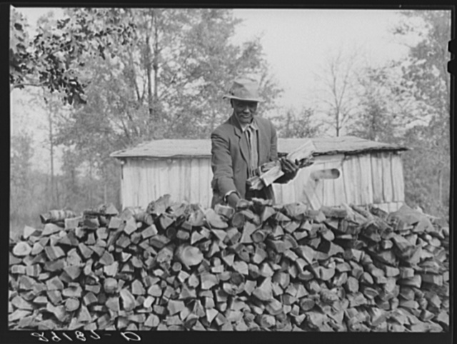 Evicted sharecroppers with firewood. Butler County, Missouri
