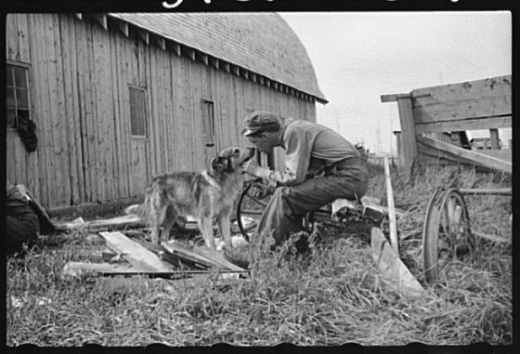 Farm boy of Minnesota cut-over land, Lake of the Woods