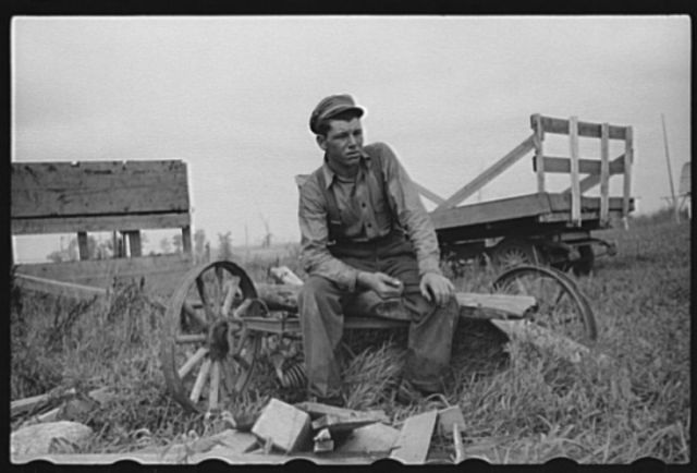 Farm boy of Minnesota cut-over land, Lake of the Woods County, Minnesota