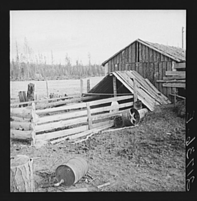 Farm buildings, slab construction, on new stump farm. Boundary County, Idaho. See general caption 49