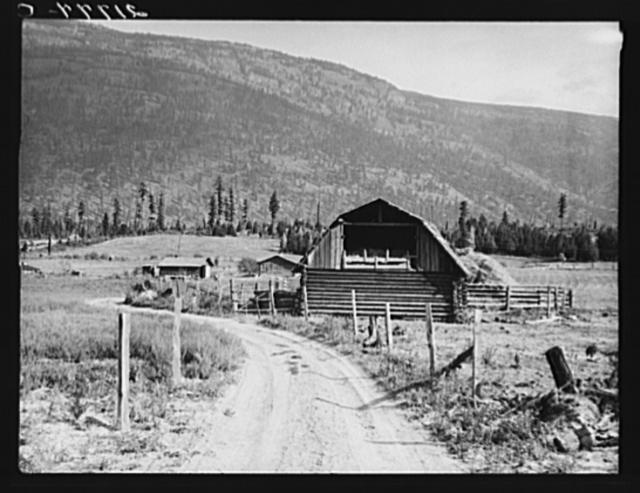 Farm of FSA (Farm Security Administration borrower). Land clearing loan. Boundary County, Idaho. See general caption 56